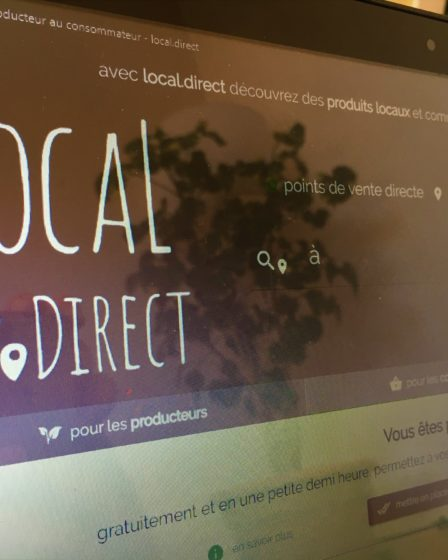local.direct