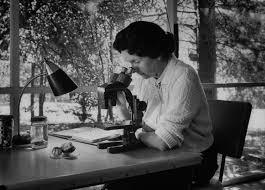 Rachel Carson Printemps Silencieux